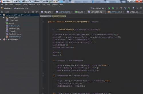 Screenshot of Cloud IDE