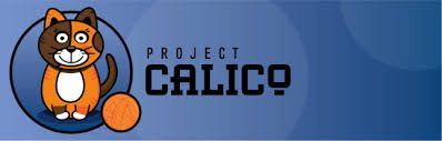 project calico